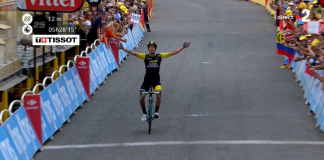 Roglic Tour De France
